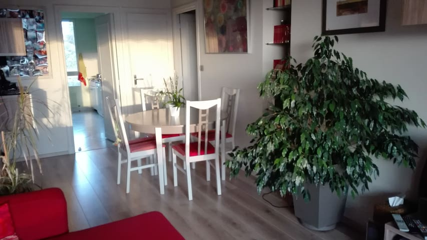 Appart 85 m2 à Ecully - 10 mn centre de Lyon - Écully - Appartamento