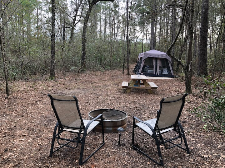 Black Creek Retreat Secluded Woods Site
