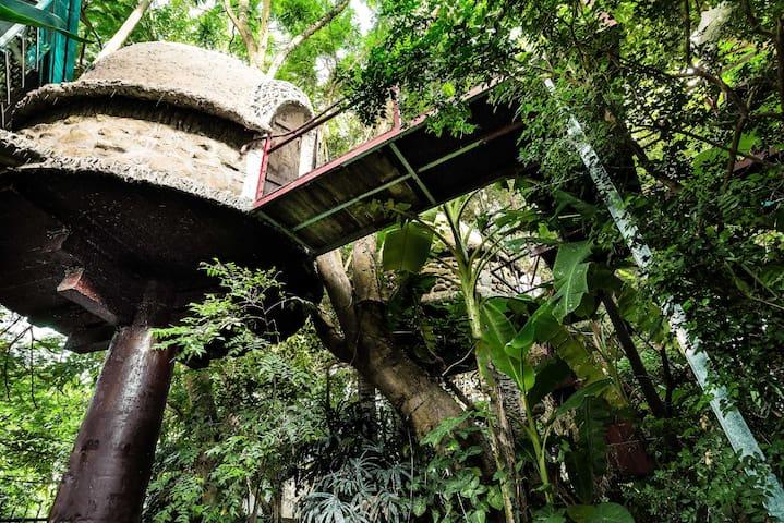 Tropical Paradise Tree House+ POOL +2000m2 Garden