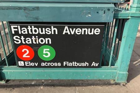 # 1 B Brooklyn NYC Apt close to metro subway, JFK