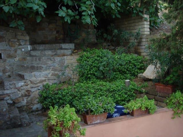 Villa Pitti - Bilocale - Giglio Porto