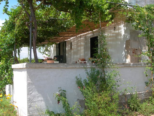 Eco farm under Mount Mongó in Jávea - Xàbia - House