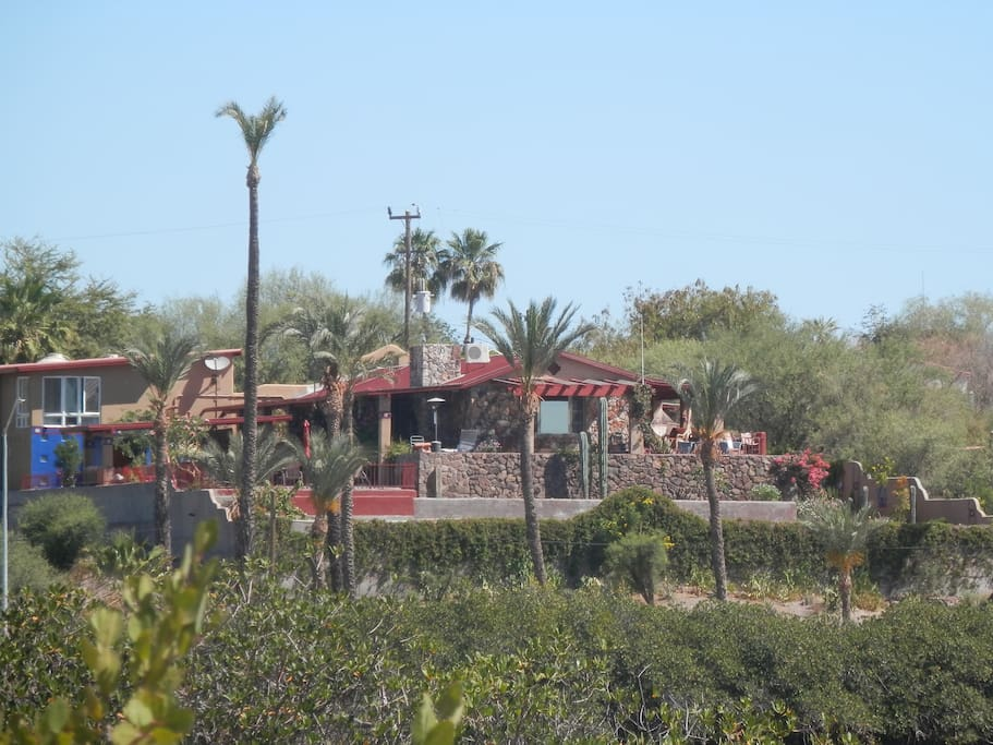 mulege singles Baja real estate group is the premier resource for purchasing a home, selling a home, financing and property listings in northern baja california physical address : km 345 carretera libre.