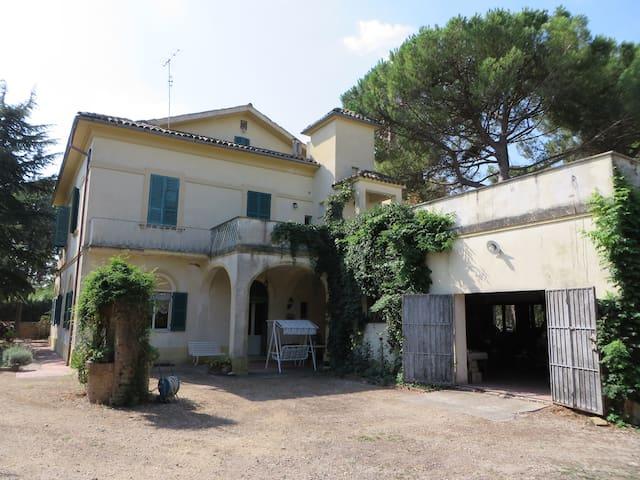 Villa Nel Verde attico - Casalbordino-miracoli - Flat