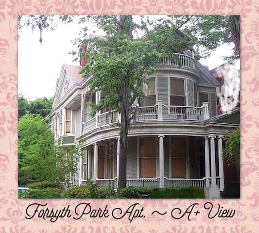 Forsyth Park Apt. ~ A+ View - Savannah - Pis
