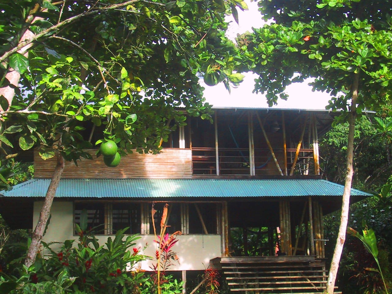 Casa Bambu is in a lovely garden like setting with a lush yard of  carpet grass leading to the beach