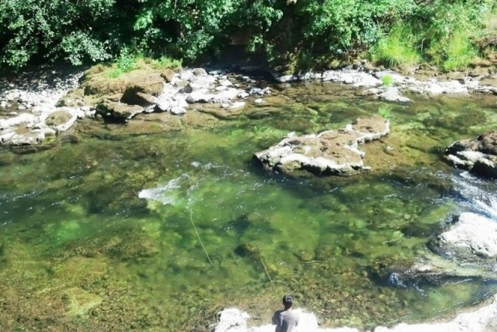 Fish Blue River - a short walk from your room.