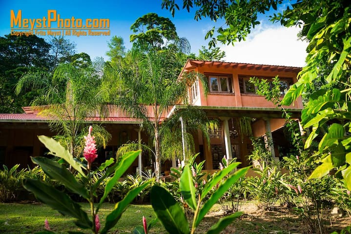 La Villa de Soledad Boutique B&B - La Ceiba - Bed & Breakfast
