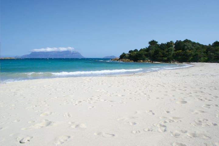 Vacanza Mare e Relax a Pittulongu - Pittulongu