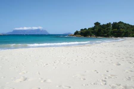 Vacanza Mare e Relax a Pittulongu - Pittulongu - 公寓