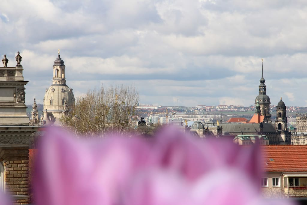 Blick vom Frühstückstisch auf die Altstadt von Dresden ...