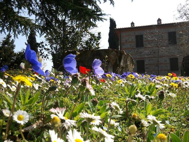 Casa Vacanze Belvedere  - Pieve San Giovanni - Casa de camp
