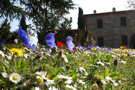 Casa Vacanze Belvedere  - Pieve San Giovanni - Villa