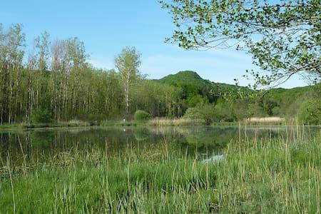 La chambre verte en Petite Montagne - Légna