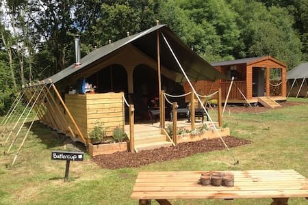 Daisy meadows safari tents  - Uffculme - 帐篷