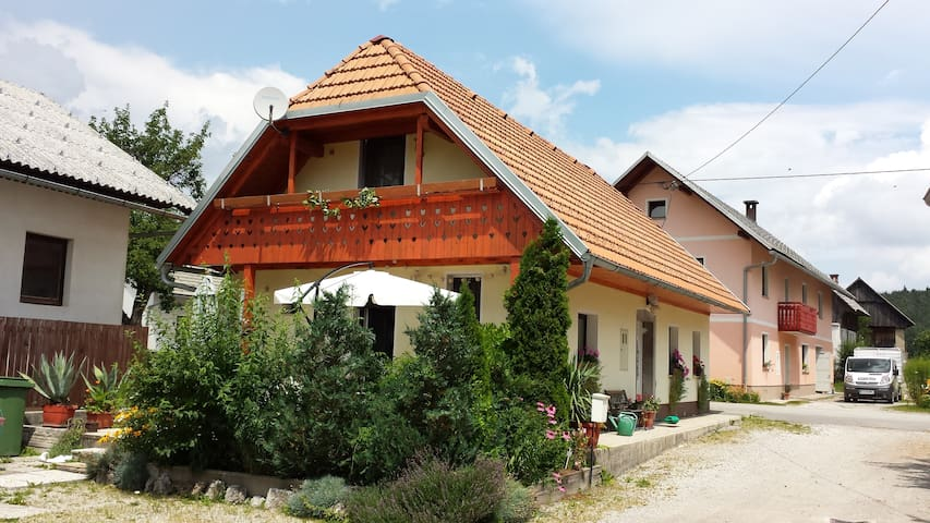 A nice classic Slovenian house - Velike Bloke - House