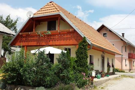 A nice classic Slovenian house - Velike Bloke - Huis