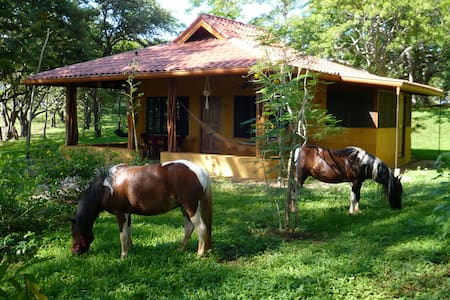 Loc. in a organic farm 5mn to beach - Tamarindo - Casa