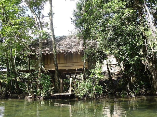 Cabaña Ecologica junto al rio Quegueche. Pura vida