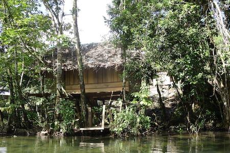 Cabaña Ecologica junto al rio Quegueche. - Livingston