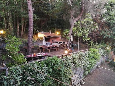 Cottage Etna Park with Jacuzzi