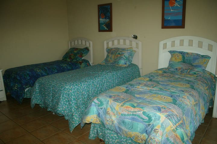 Second BR (three twin beds)