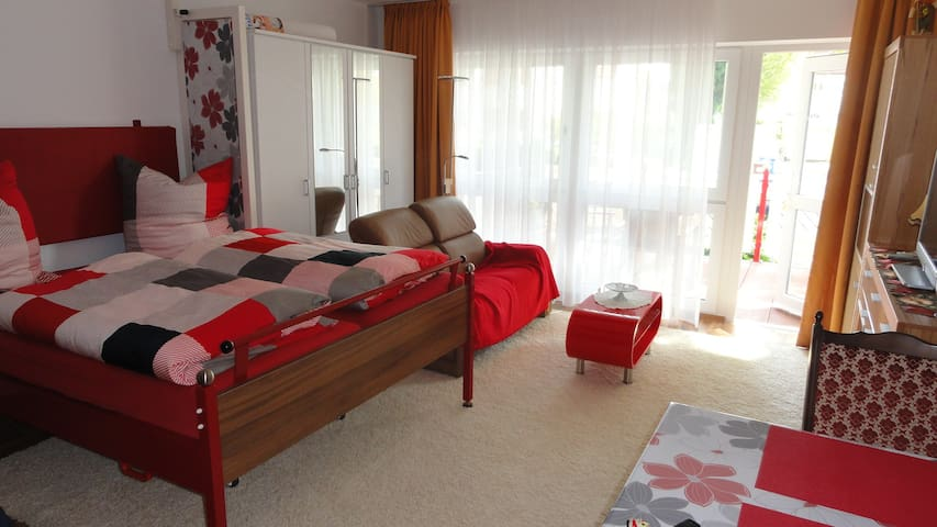 Apartment near Lake of Constance - Friedrichshafen - Apartemen