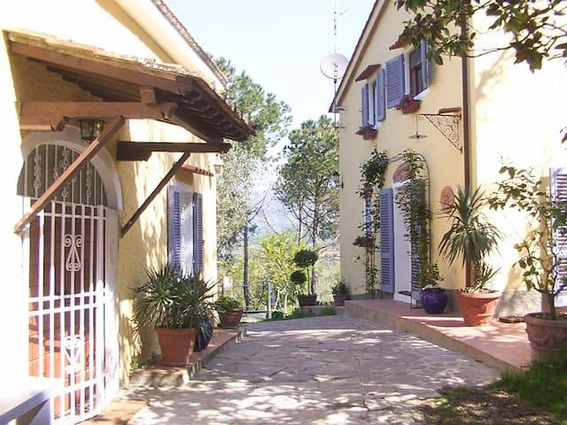 Tuscany farm house - Monsummano Terme - Villa