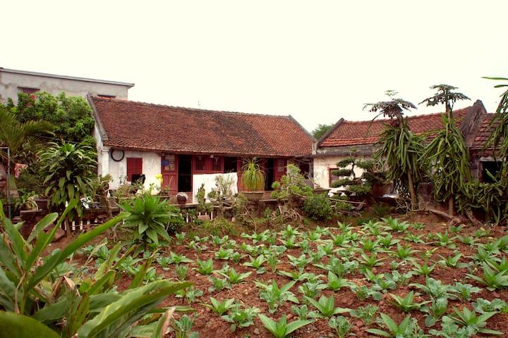 Ecohost Giao Xuan