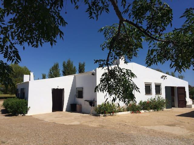 Exceptional Casa de la Platjola - Els Muntells - Huis