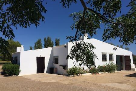 Excepcional Casa de la Platjola - Els Muntells - Haus