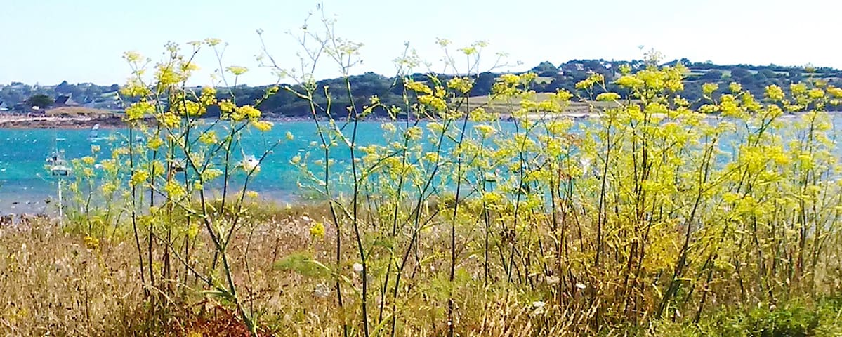 Feunteunigou: cute villa + seaview
