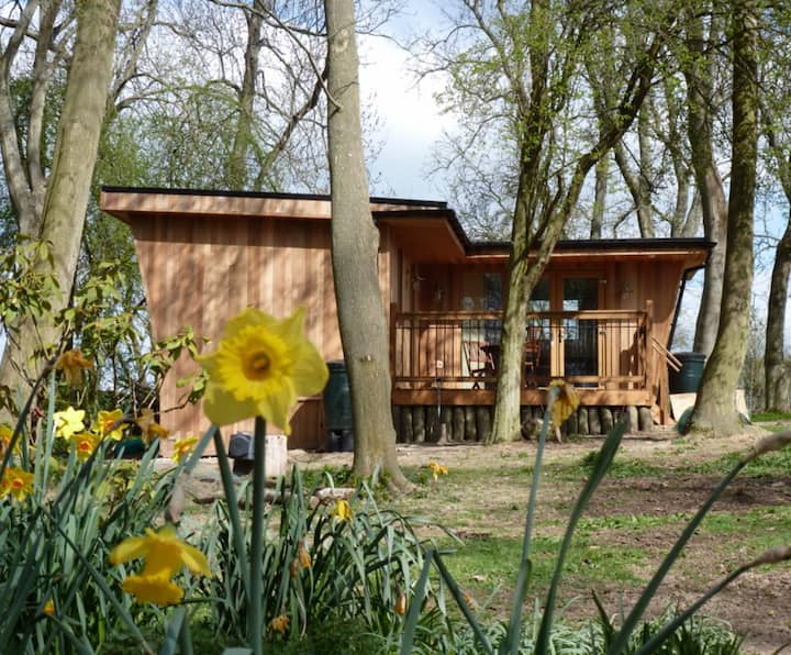 Woodland Retreat COVID-19 Reopening 12th April