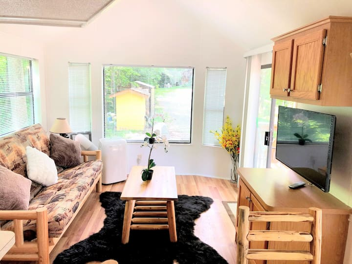 NEW 1BED/1 BATH, MOUNTAIN VIEW CABIN, AC/TV,PETS