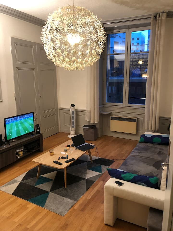 Bel appartement lumineux LYON 02 Confluence