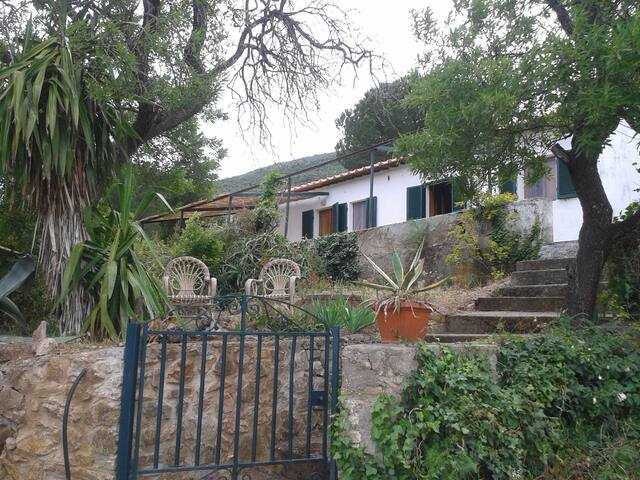 La Cantina – the little farm house at Monte Grosso - Cavo - House