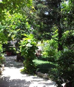 Garden View Room - Hội An - Bed & Breakfast
