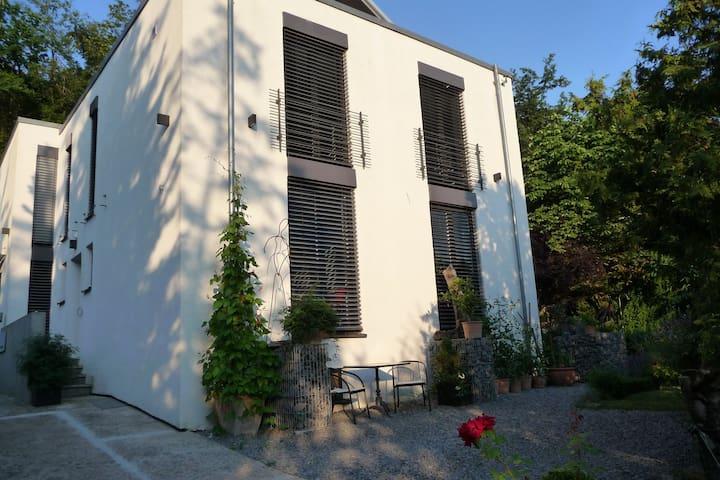 Einzigartige Wohnung nahe Heilbronn - Talheim - Σπίτι