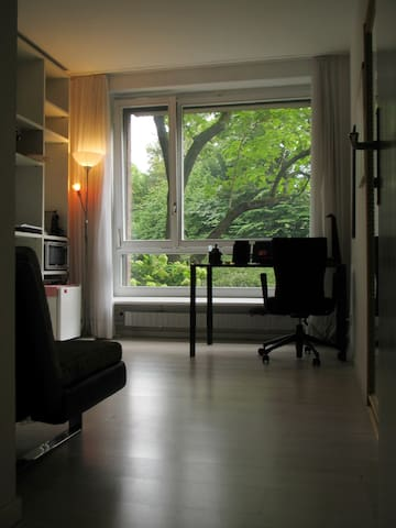 Sunny, cozy studio in Basel City - Bâle - Appartement