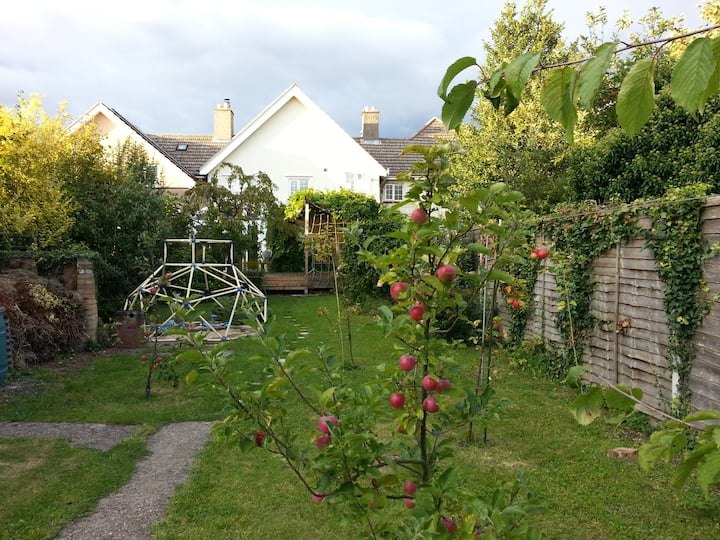 Little Orchard - Single room