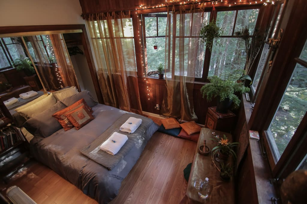 Nothing but treetops from the windows. Plenty of storage in closet.