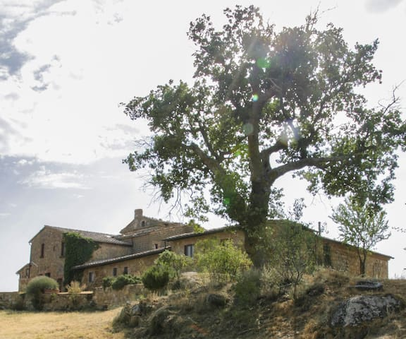 "Cosy & large studio in Val d'Orcia ""Il Ovile"""