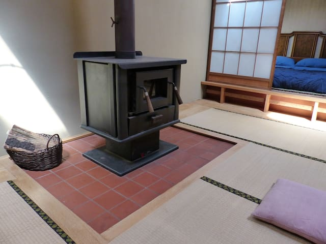 Wood stove for use in winter