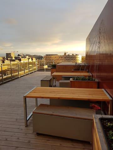 Buildling's rooftop terrace
