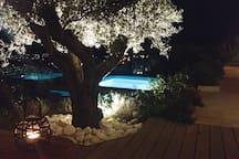 5* smukke villaer til leje. opvarmet pool, jacuzzI
