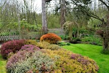 The garden (in April) . At the back of the house there is a field full of trees.