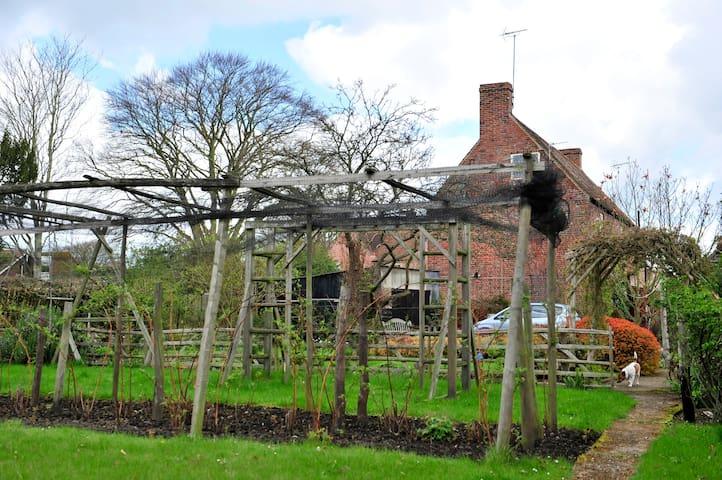 The garden (in April) - raspberry canes nearest camera.