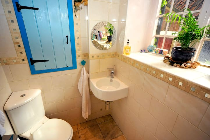 The downstairs loo, sink (and shower opposite sink) :  wetroom