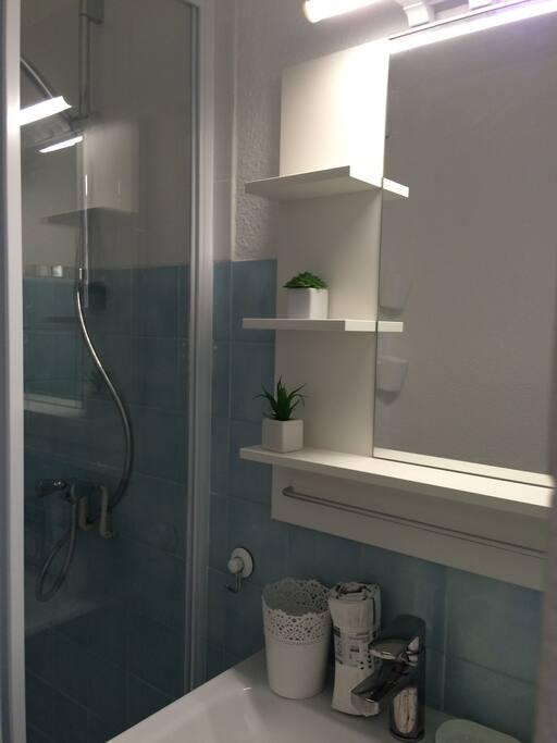 une salle de bain avec douche et wc