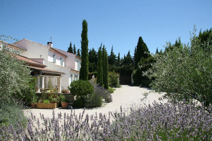 Spacious room in provencal mas - Saint-Rémy-de-Provence - Bed & Breakfast
